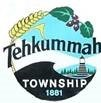Tehkummah, Township of